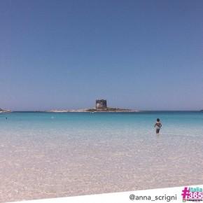 #italia365 @anna_scrigni - Spiaggia della Pelosa (Sardegna)