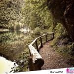laghi di Fusine - anavi555