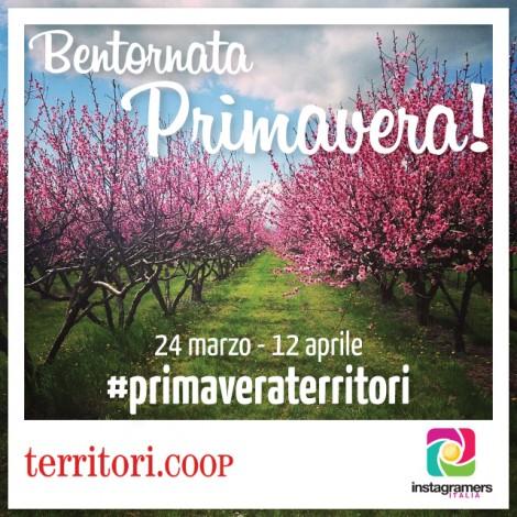 Territori.Coop e Instagramers Italia vi invitano a scattare fotografie di paesaggi agricoli