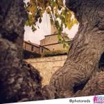 #italia365 Castello Banfi - @photoreds