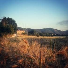 Arrivo in Masseria. Foto @alessandrapolo