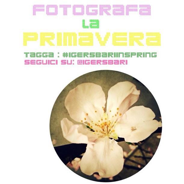 Fotografa la Primavera con @IgersBari!
