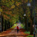 Instameet d'autunno a Badde Salighes in Sardegna