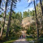 Instameet alla scoperta di una delle foreste più antiche di Sardegna