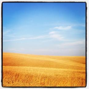 Luca Federici su Instagram Toscana Dream