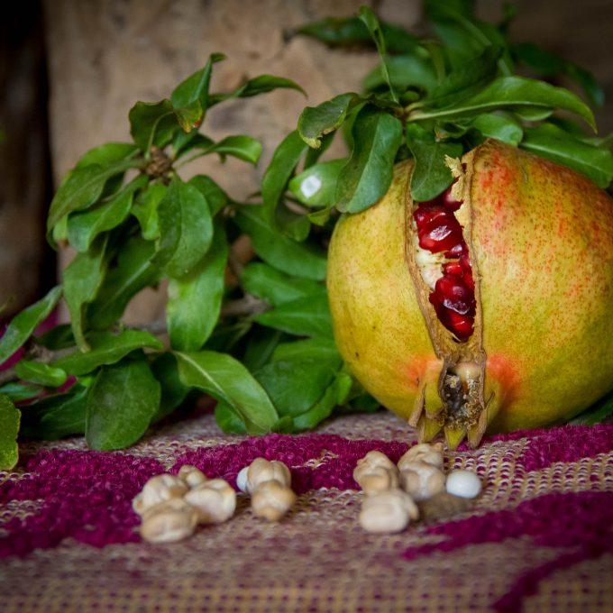 L'autunno in Barbagia e le 'domos antigas' di Meana Sardo