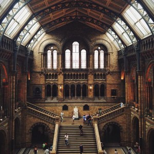 Natural History Museum by @milkydrop