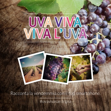 La vendemmia in Sardegna si fa su Instagram con #uvavivasardegna