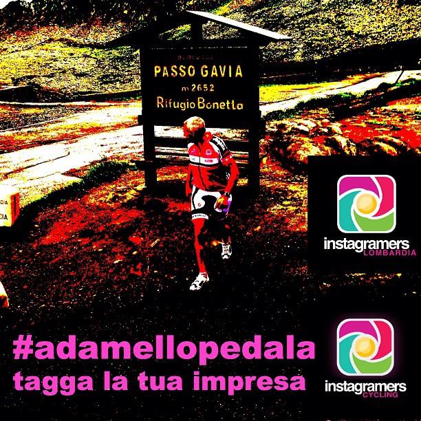 #adamellopedala: igers in vetta