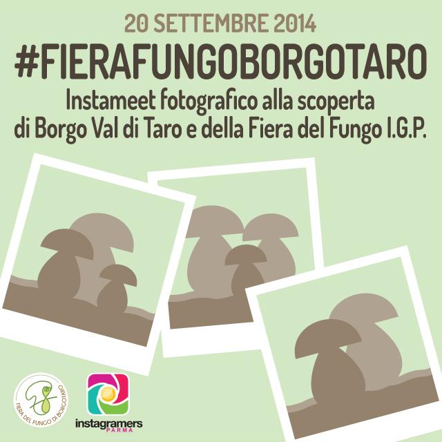 All'assaggio della #FIERAFUNGOBORGOTARO con @igersparma