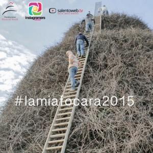 lamiafocara2015