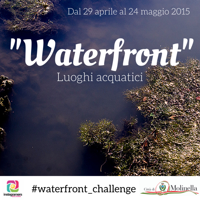 waterfront_challenge