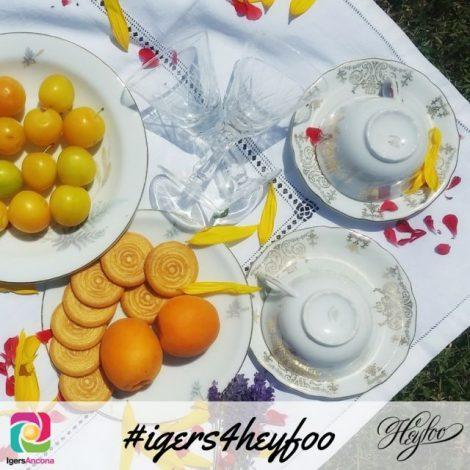 Un picnic vintage con Igers Ancona e heyfoo