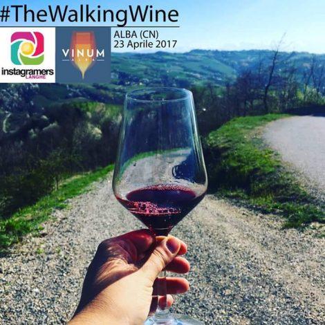#TheWalkingWine, passeggiata alla scoperta di Alba e dei suoi migliori vini
