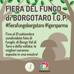 Con @igersparma alla #FieraFungoBorgotaro