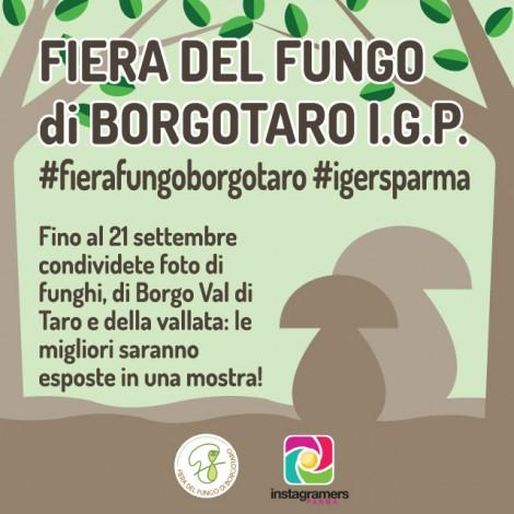 Con @igersparma alla Fiera del Fungo di Borgotaro
