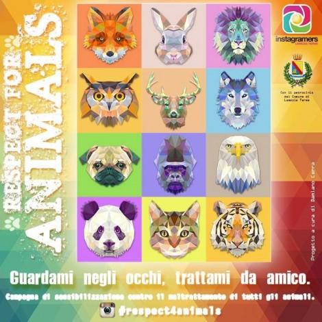 Rispettiamo gli animali con @IgersLameziaTerme