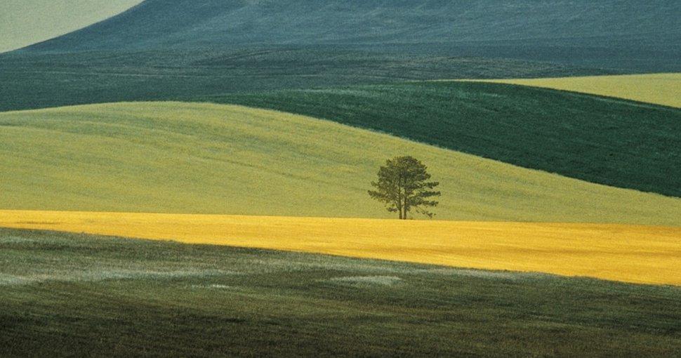 Franco_Fontana_Puglia_1987