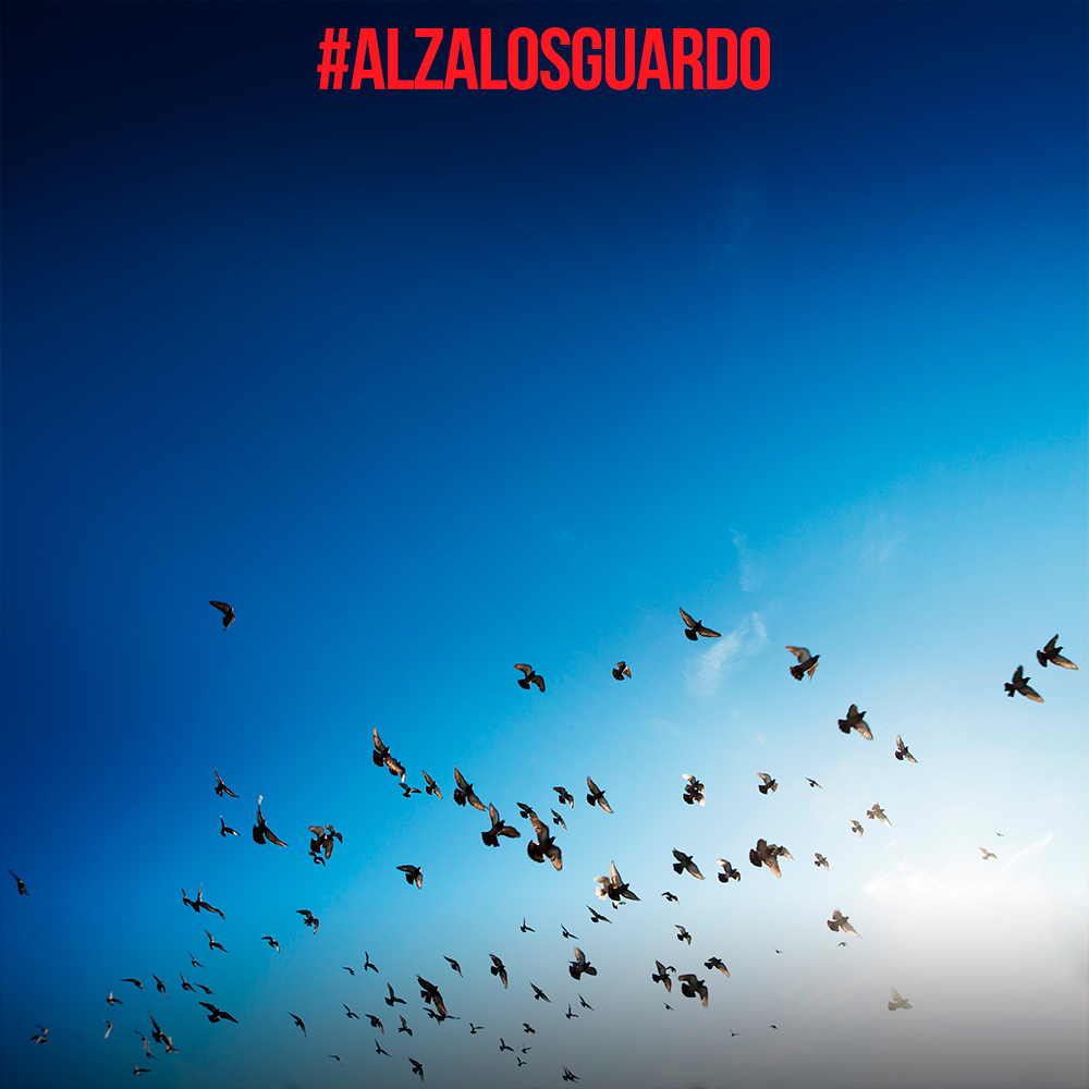 locandina_alzalosguardo