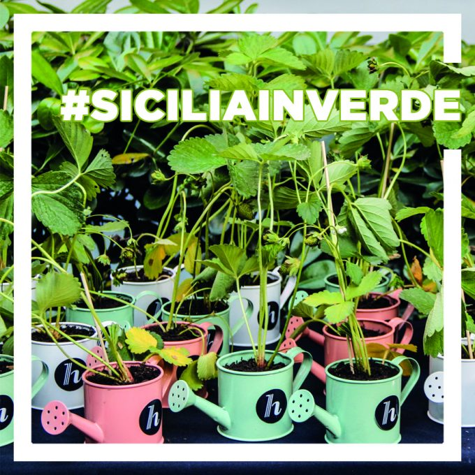 #SiciliaInVerde, il nuovo challenge di IgersSicilia