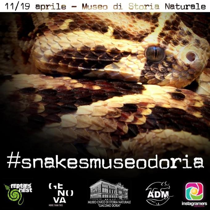 Tagga i serpenti genovesi su Instagram