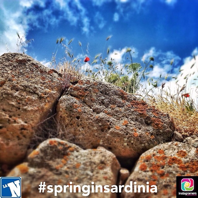 Su La Nuova Sardegna le foto degli Igers sardi