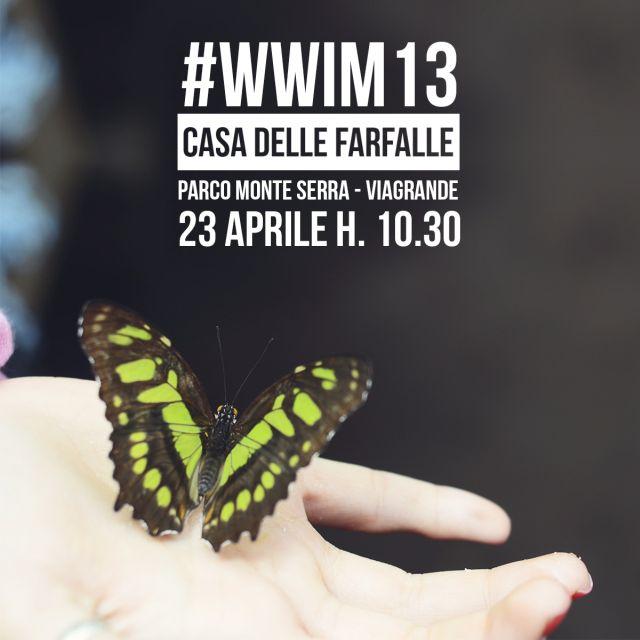 wwim13-igerscatania