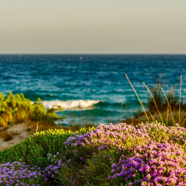 WWIM15 – Con Instagramers Taranto a spasso sulle dune